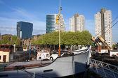 Rotterdam Cityscape in Netherlands — Stock Photo