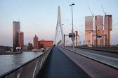 Rotterdam Downtown Skyline at Sunset — Foto Stock