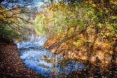 Autumn in Skaryszewski Park in Warsaw — Stock Photo