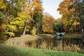 Royal Lazienki Park in Warsaw — Stock Photo