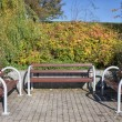Three Benches in a Park — Stockfoto