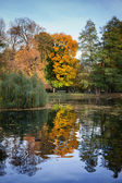 Lazienki Park Autumn Scenery in Warsaw — Stock Photo