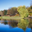 City Park with a Pond in Warsaw — Foto Stock