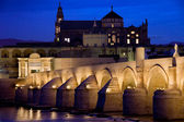 Roman Bridge and Mezquita in Cordoba at Dawn — Stock Photo