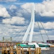 River Pier and Bridge in Rotterdam — Stock Photo