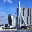 Rotterdam City Downtown — Stock Photo