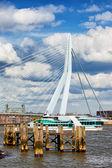 River Pier and Bridge in Rotterdam — Stock Photo