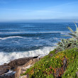 Atlantic Ocean Coastline in Estoril — Stock Photo #46021291