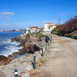 Road Along the Atlantic Ocean in Estoril — Stock Photo #46021459