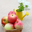 Small basket of apples and bouquet of white phloxes on a canvas - Stock Photo
