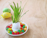 Easter dekor on a wooden background — Stock Photo
