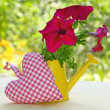 Bouquet of petunia in a watering-can - Stock Photo