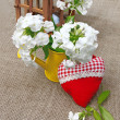 bouquet of phloxes and red heart on a canvas background — Stock Photo