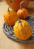 Decorative pumpkins — Stock Photo