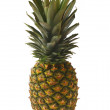Royalty-Free Stock Photo: Pineapple fruit