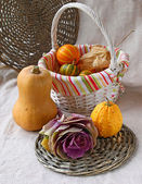 Ornamental cabbage and pumpkins on a background a canvas — Stock Photo