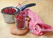 Season of cranberry. Cooking fresh drink of cranberry — Stock Photo