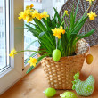 Easter decoration window blooming daffodils and easter eggs — Stock Photo