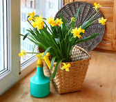 Basket with daffodils and sprayer on the balcony window. — Stock Photo