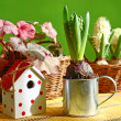 Stock Photo: Retro still life with hyacinth