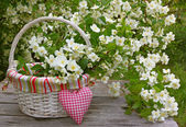 Blooming jasmine in a wicker basket and heart on old wooden wall — Stock Photo