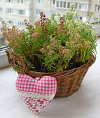 Basket with flowers and heart — Stock Photo