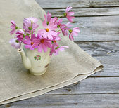 Still-life with bunch of cosmos in the old tea teapot on the woo — Stockfoto
