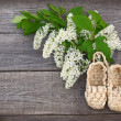 Bird-cherry tree flowers and sandals made of bark — Stock Photo