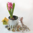 Stock Photo: Easter composition with pink hyacinth and a birdhouse