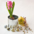 Easter still life with pink hyacinth — Stock Photo #34998379