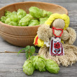 The use of hop cones for women's health and beauty — Stockfoto