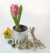 Easter composition with pink hyacinth and a birdhouse — Stock Photo