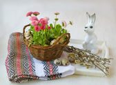 Easter still life with pink daisies and willow branches — Stockfoto