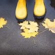 Yellow rubber boots in a puddle of autumn — Stock Photo
