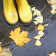 Yellow rubber boots in a puddle of leaf fall — Stock Photo