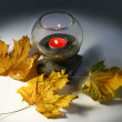 Vintage lantern with a candle next to the leaves — Stock Photo