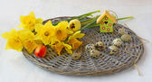 Easter still life with bouquet of spring flowers, quail eggs — Stock fotografie