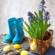 Easter still life with hyacinths — Stock Photo