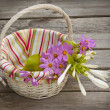 Hosta and cosmos in a basket — Stock Photo