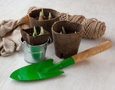 Garden still life with peat pots and gloves — Stock fotografie