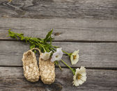Rural still life with zinnia and sandals made of bark — Stock Photo