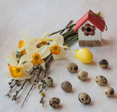 Daffodils and willow twigs — Stock Photo
