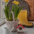 Daffodils on window and yellow gumboots — Stock Photo #40876407