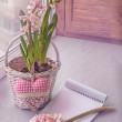 Stock Photo: Blooming pink hyacinth. Toning