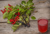Drink and a branch of viburnum — Stock Photo