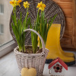 Yellow daffodils in a basket and heart — Stok fotoğraf