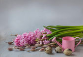 Pink hyacinth, willow twigs and quail eggs — 图库照片