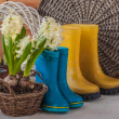 White hyacinth in basket — Stock Photo