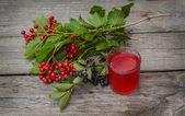 Glass of drink with viburnum — Stock Photo