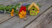 Flowers and  birdhouse — Foto de Stock